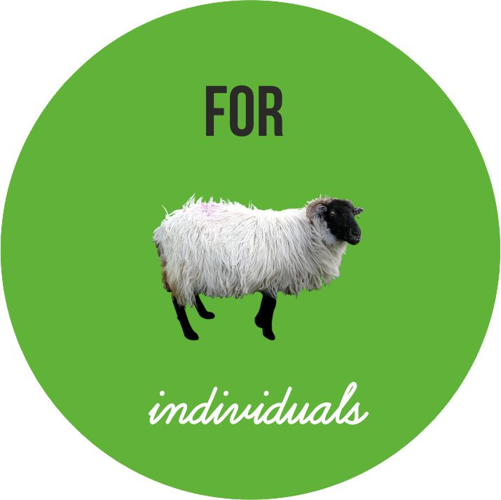 for individuals sheep